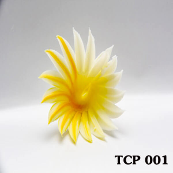 hoa-socola-thanh-pham-tcp001