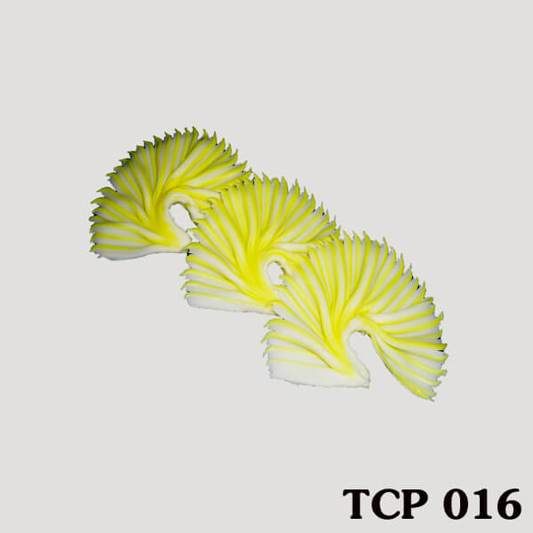 hoa-socola-thanh-pham-tcp16