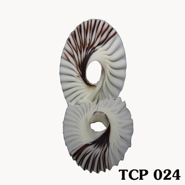 hoa-socola-thanh-pham-tcp24