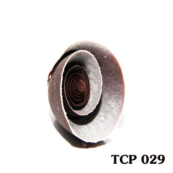 hoa-socola-thanh-pham-tcp29
