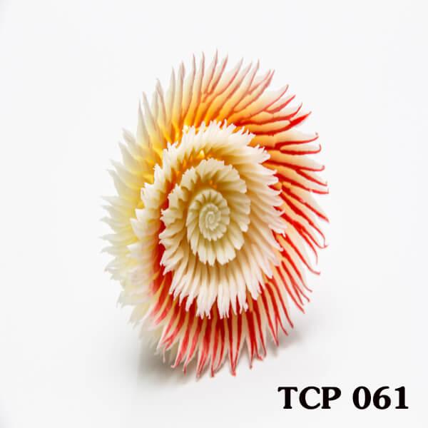 hoa-socola-thanh-pham-tcp61