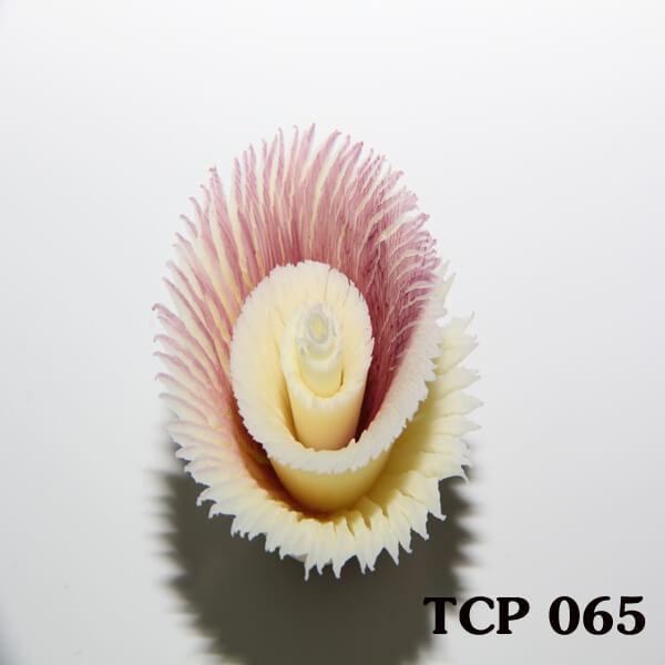 hoa-socola-thanh-pham-tcp65