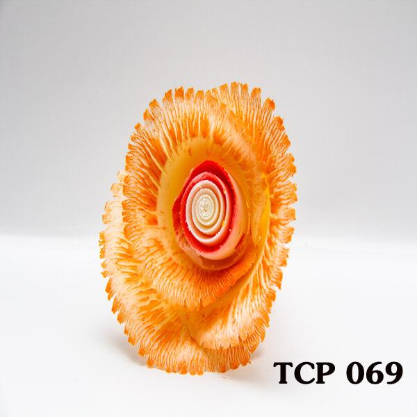 hoa-socola-thanh-pham-tcp69