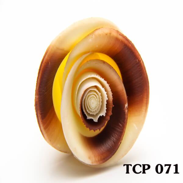 hoa-socola-thanh-pham-tcp71