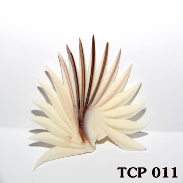 hoa-socola-thanh-pham-tcp11