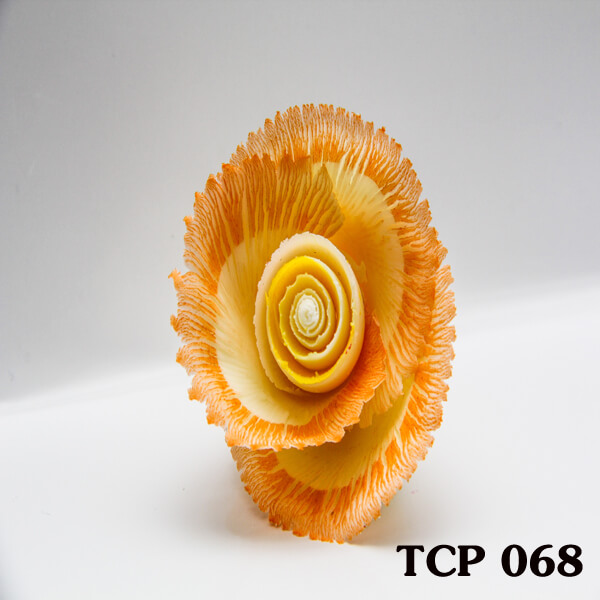 hoa-socola-thanh-pham-tcp68
